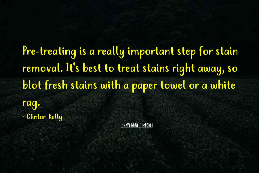 Clinton Kelly Sayings: Pre-treating Is A Really Important Step For Stain Removal. It's Best To Treat Stains Right Away, So Blot Fresh Stains With A Paper Towel Or A White Rag.