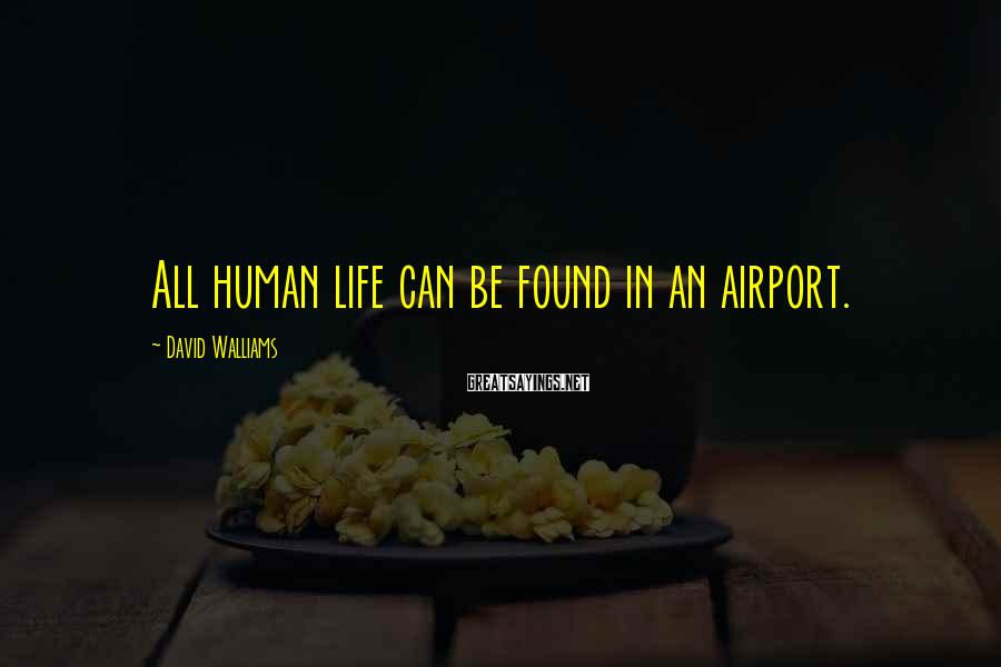 David Walliams Sayings: All Human Life Can Be Found In An Airport.