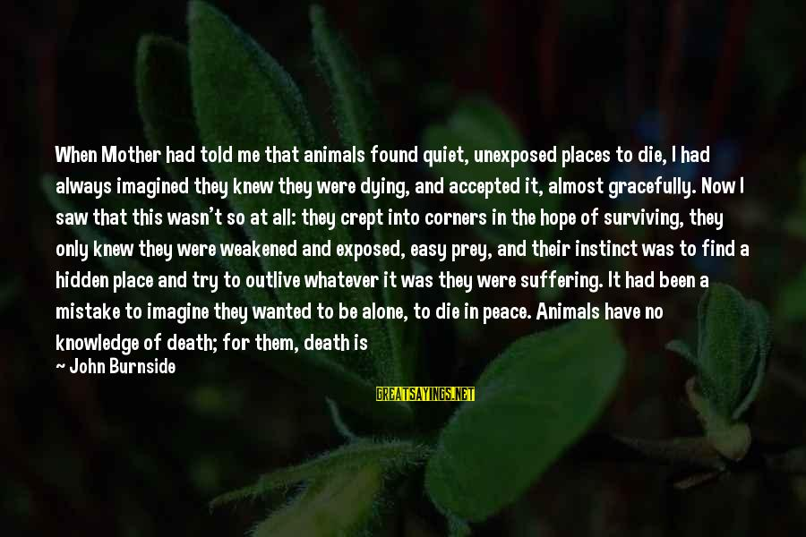A Good Life And Death Sayings By John Burnside: When Mother had told me that animals found quiet, unexposed places to die, I had