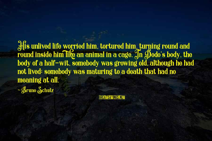 A Life Half Lived Sayings By Bruno Schulz: His unlived life worried him, tortured him, turning round and round inside him like an