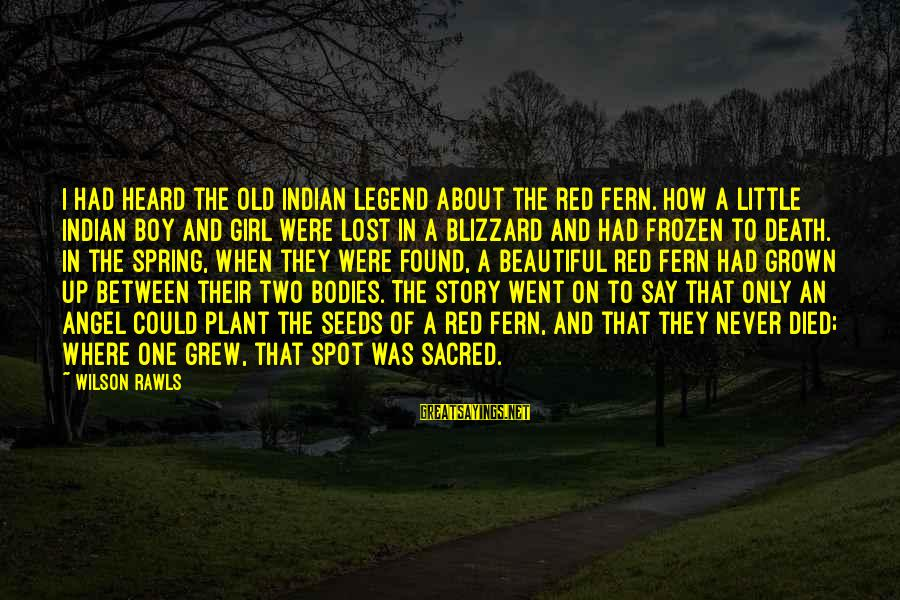 A Lost Girl Sayings By Wilson Rawls: I had heard the old Indian legend about the red fern. How a little Indian