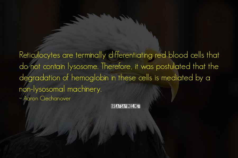 Aaron Ciechanover Sayings: Reticulocytes are terminally differentiating red blood cells that do not contain lysosome. Therefore, it was