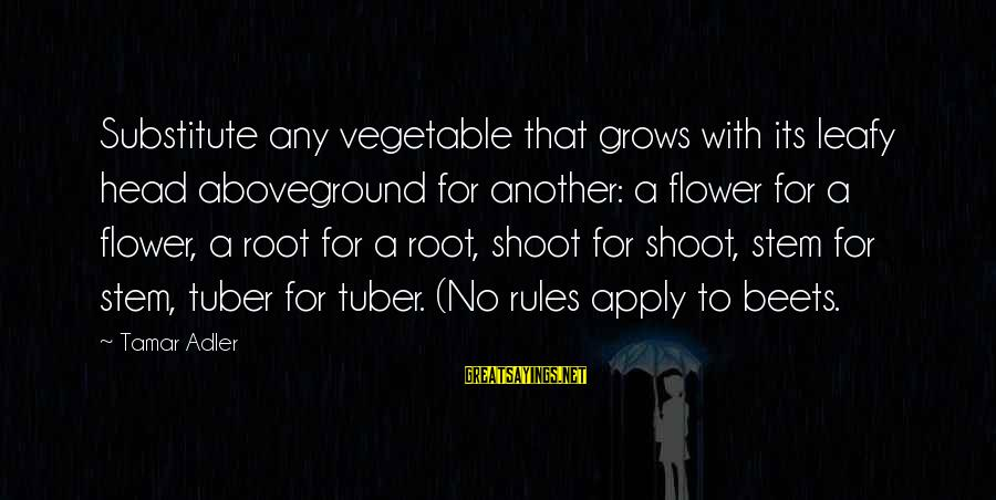 Aboveground Sayings By Tamar Adler: Substitute any vegetable that grows with its leafy head aboveground for another: a flower for