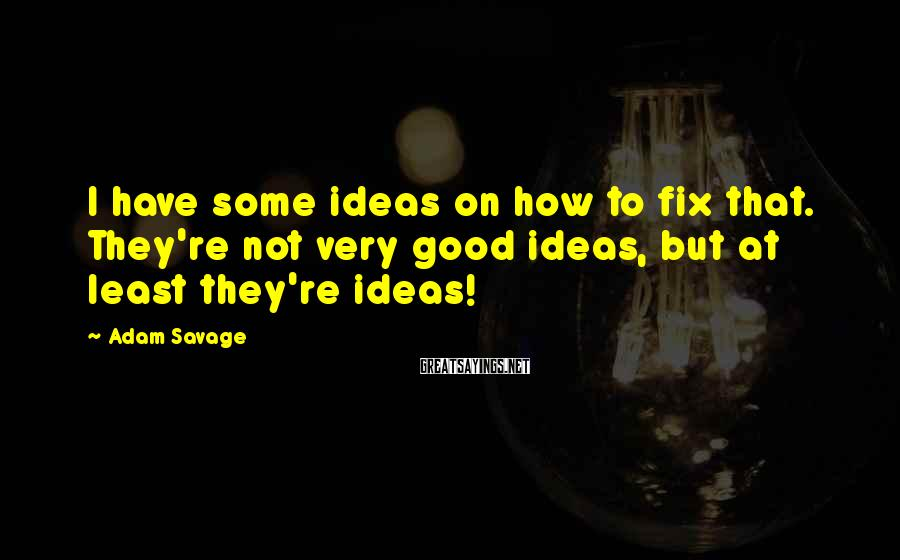 Adam Savage Sayings: I have some ideas on how to fix that. They're not very good ideas, but