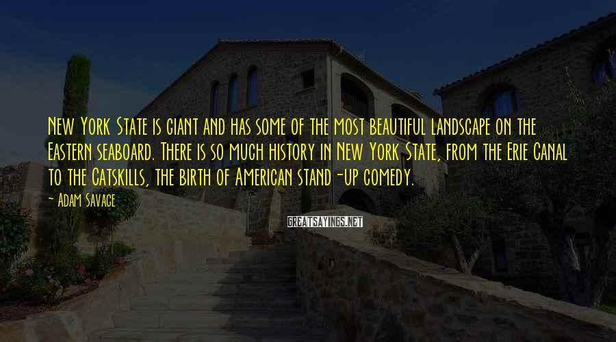Adam Savage Sayings: New York State is giant and has some of the most beautiful landscape on the