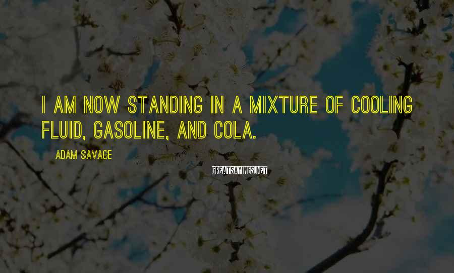 Adam Savage Sayings: I am now standing in a mixture of cooling fluid, gasoline, and cola.