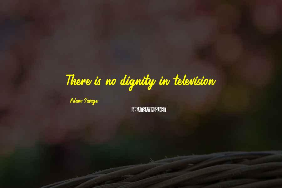 Adam Savage Sayings: There is no dignity in television.