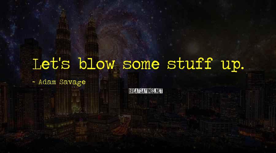 Adam Savage Sayings: Let's blow some stuff up.