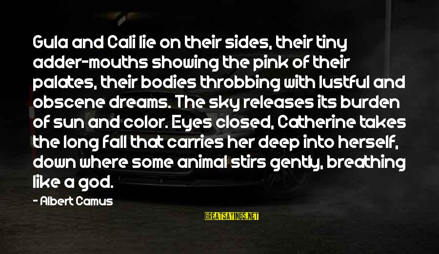 Adder's Sayings By Albert Camus: Gula and Cali lie on their sides, their tiny adder-mouths showing the pink of their