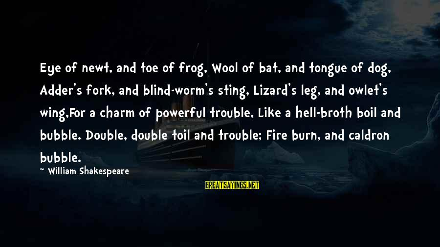 Adder's Sayings By William Shakespeare: Eye of newt, and toe of frog, Wool of bat, and tongue of dog, Adder's