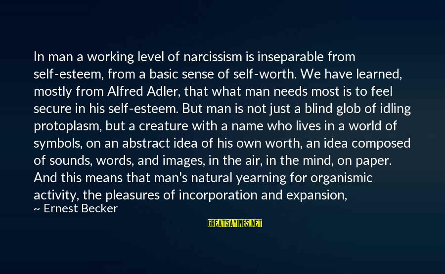 Adler's Sayings By Ernest Becker: In man a working level of narcissism is inseparable from self-esteem, from a basic sense