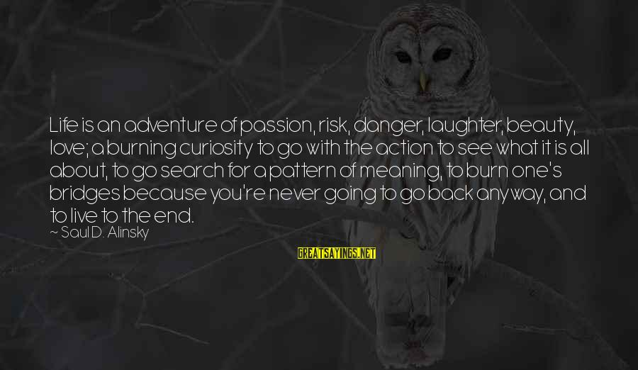 Adventure And Curiosity Sayings By Saul D. Alinsky: Life is an adventure of passion, risk, danger, laughter, beauty, love; a burning curiosity to