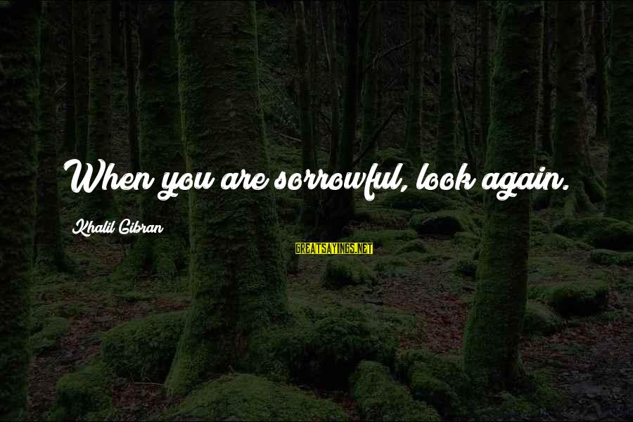 Aeternaque Sayings By Khalil Gibran: When you are sorrowful, look again.