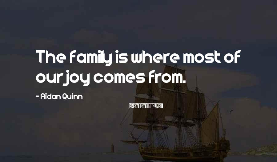 Aidan Quinn Sayings: The family is where most of our joy comes from.