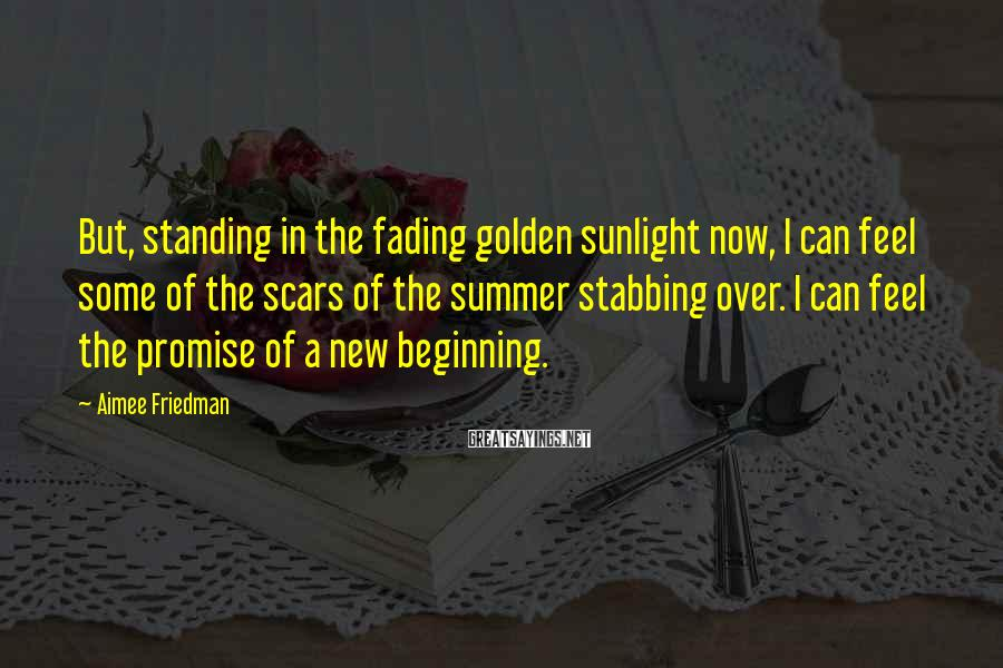 Aimee Friedman Sayings: But, standing in the fading golden sunlight now, I can feel some of the scars