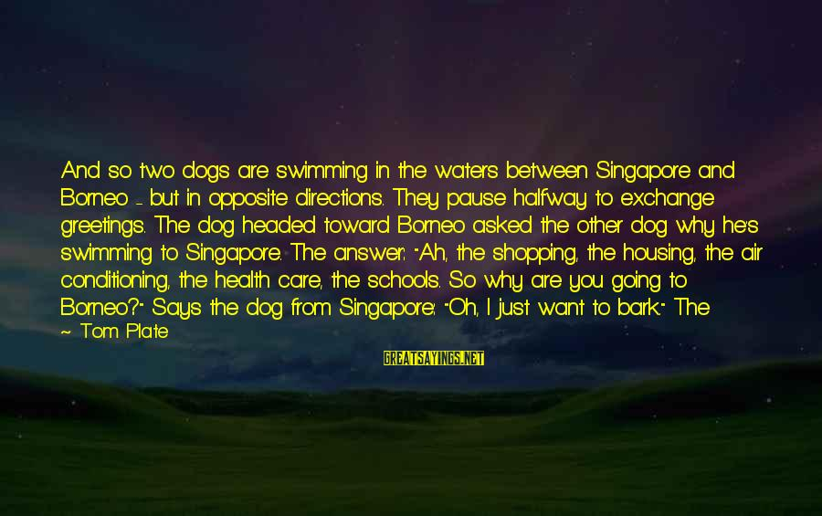 Air Headed Sayings By Tom Plate: And so two dogs are swimming in the waters between Singapore and Borneo - but