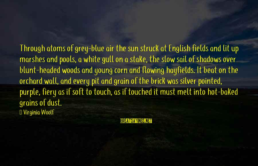 Air Headed Sayings By Virginia Woolf: Through atoms of grey-blue air the sun struck at English fields and lit up marshes