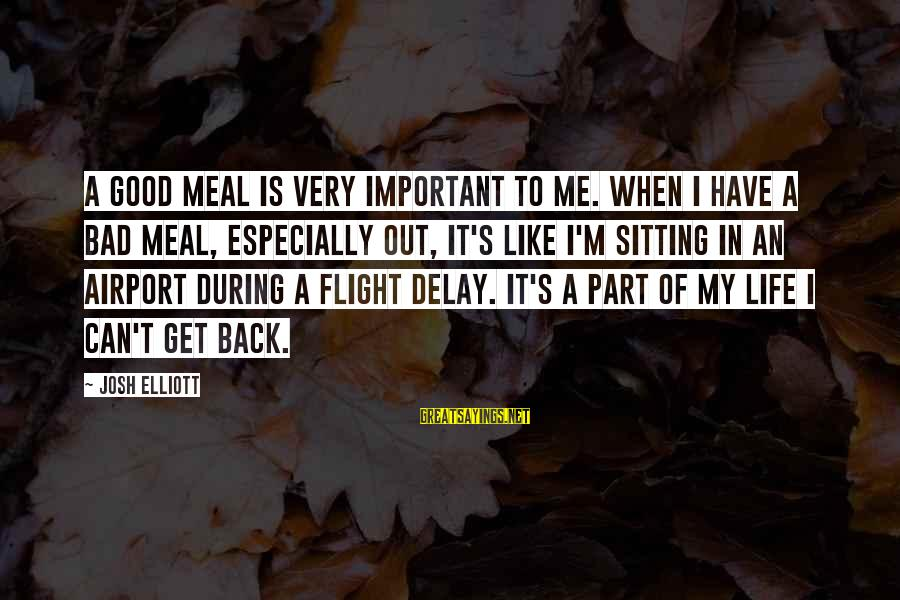 Airport Delay Sayings By Josh Elliott: A good meal is very important to me. When I have a bad meal, especially
