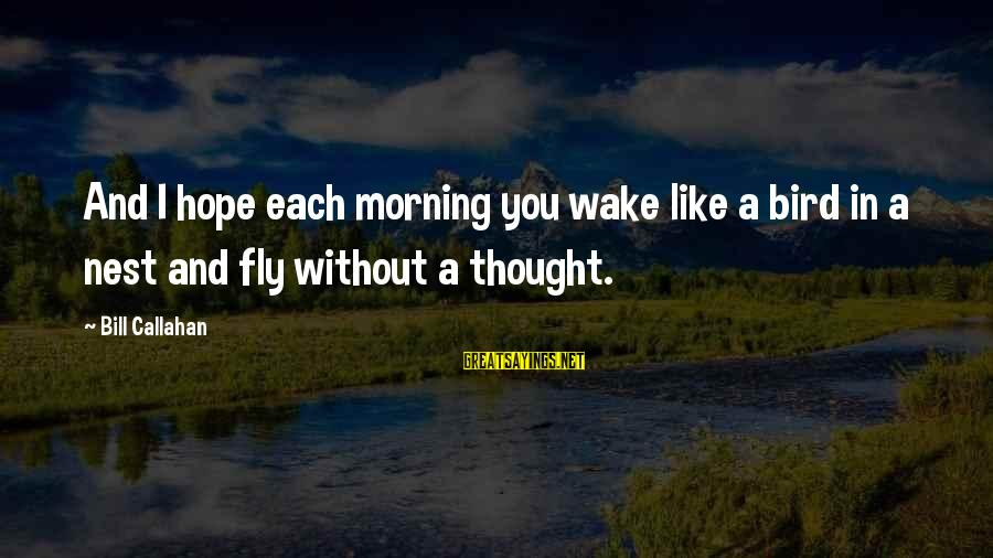 Alacranes Musical Sayings By Bill Callahan: And I hope each morning you wake like a bird in a nest and fly
