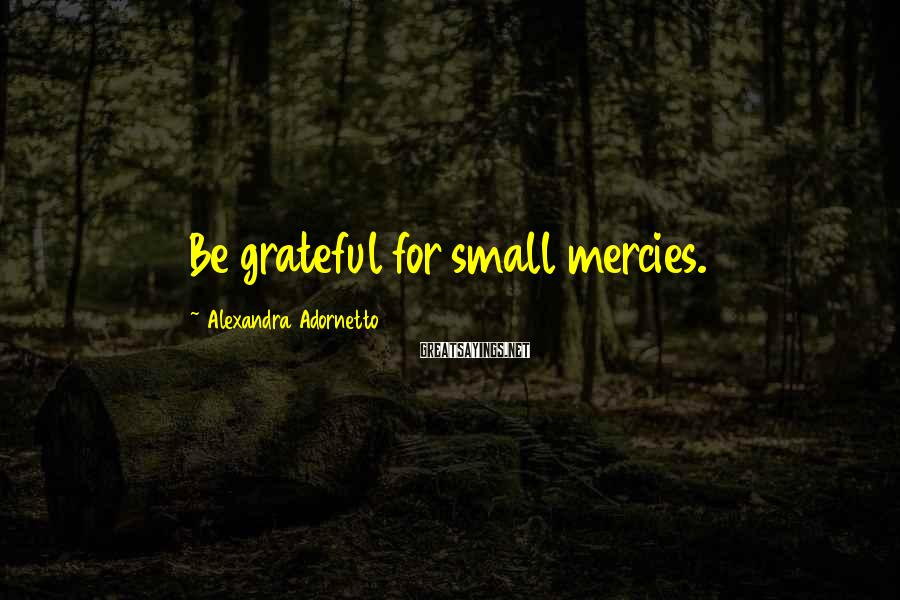 Alexandra Adornetto Sayings: Be grateful for small mercies.