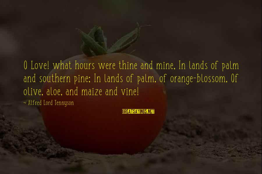 Alfred Pine Sayings By Alfred Lord Tennyson: O Love! what hours were thine and mine, In lands of palm and southern pine;