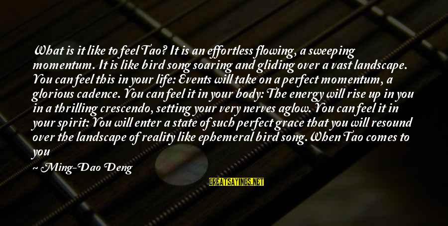 Alienation Sayings By Ming-Dao Deng: What is it like to feel Tao? It is an effortless flowing, a sweeping momentum.