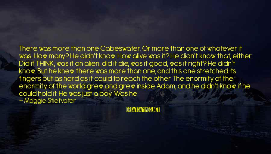 Alive Inside Sayings By Maggie Stiefvater: There was more than one Cabeswater. Or more than one of whatever it was. How