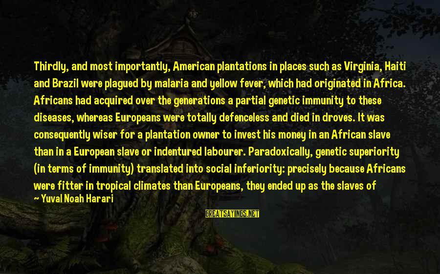 American Superiority Sayings By Yuval Noah Harari: Thirdly, and most importantly, American plantations in places such as Virginia, Haiti and Brazil were