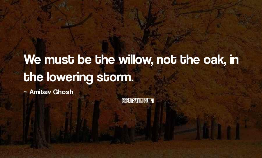 Amitav Ghosh Sayings: We must be the willow, not the oak, in the lowering storm.
