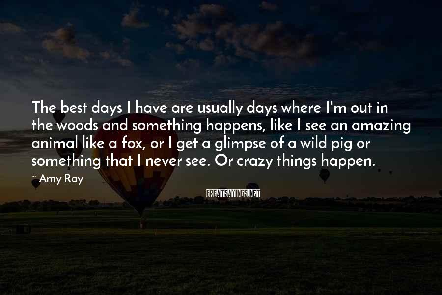 Amy Ray Sayings: The best days I have are usually days where I'm out in the woods and
