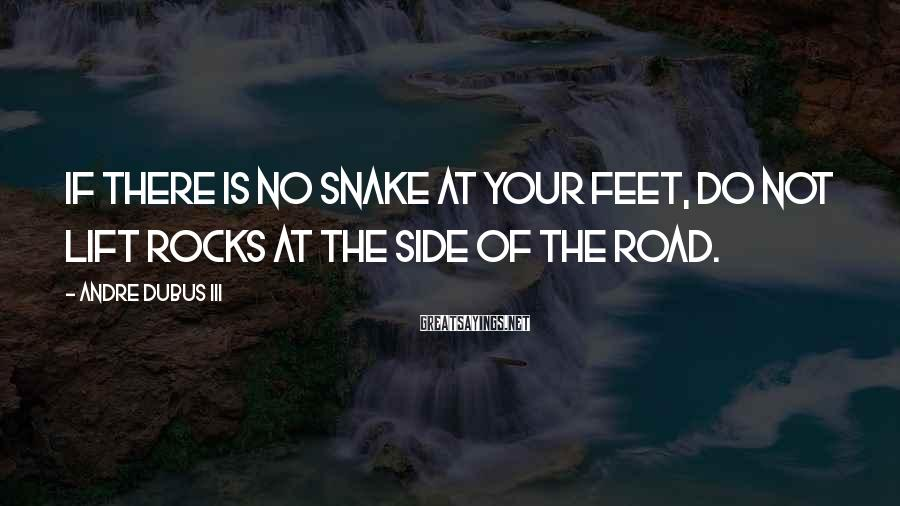 Andre Dubus III Sayings: If there is no snake at your feet, do not lift rocks at the side