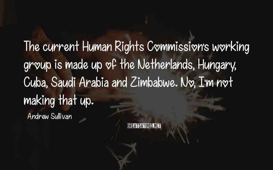 Andrew Sullivan Sayings: The current Human Rights Commission's working group is made up of the Netherlands, Hungary, Cuba,