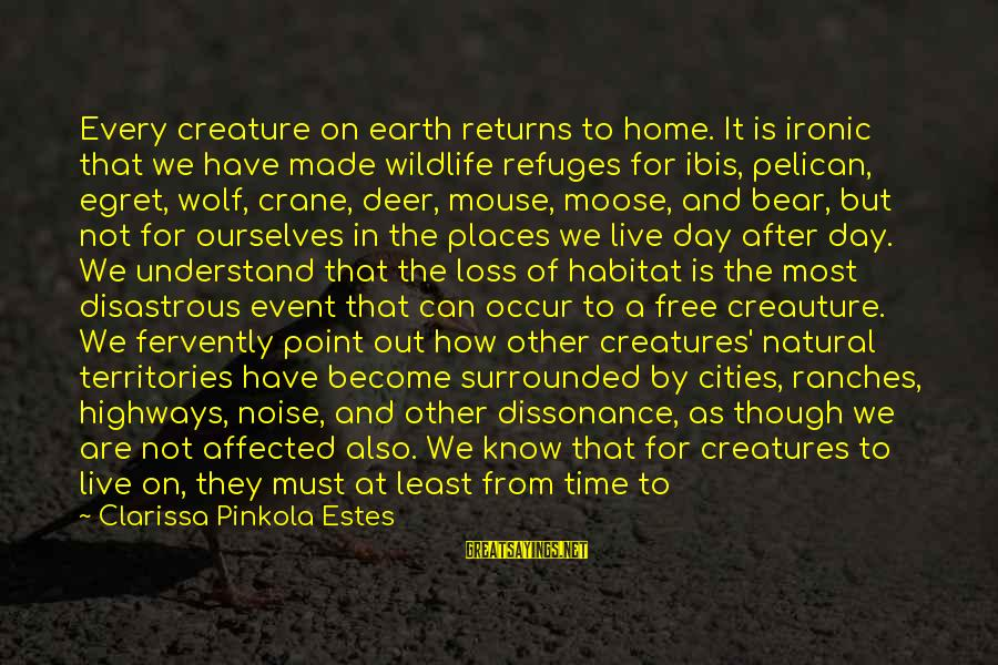Ang Sama Ng Ugali Mo Sayings By Clarissa Pinkola Estes: Every creature on earth returns to home. It is ironic that we have made wildlife