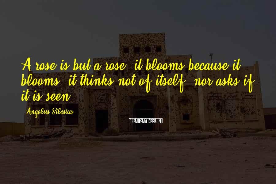 Angelus Silesius Sayings: A rose is but a rose, it blooms because it blooms; it thinks not of