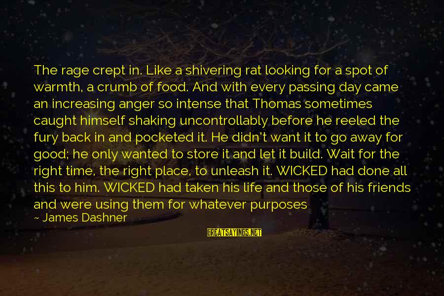Anger And Rage Sayings By James Dashner: The rage crept in. Like a shivering rat looking for a spot of warmth, a