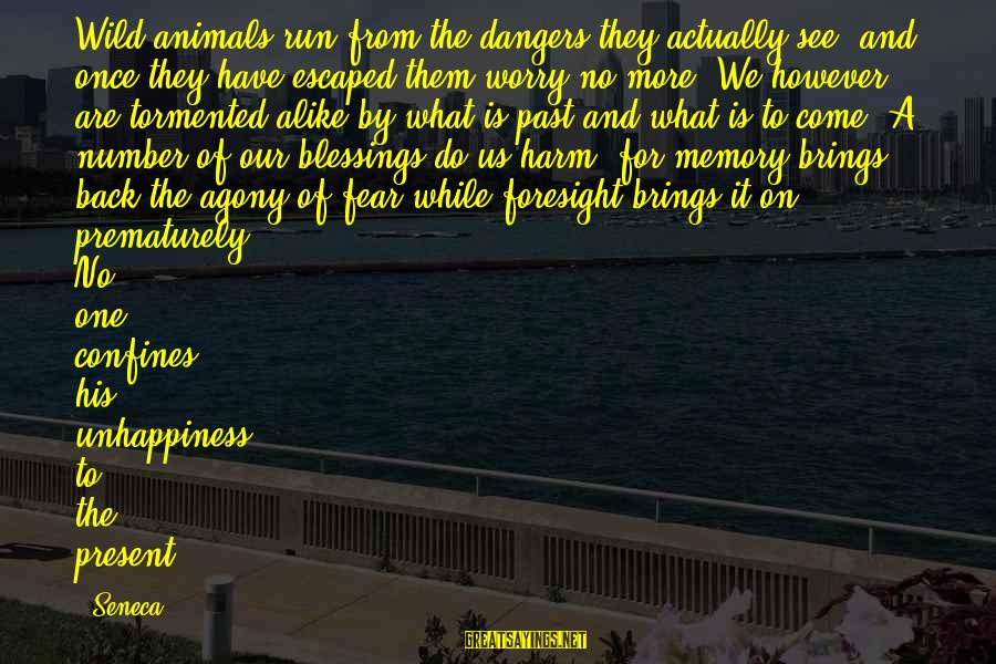 Animals And Happiness Sayings By Seneca.: Wild animals run from the dangers they actually see, and once they have escaped them