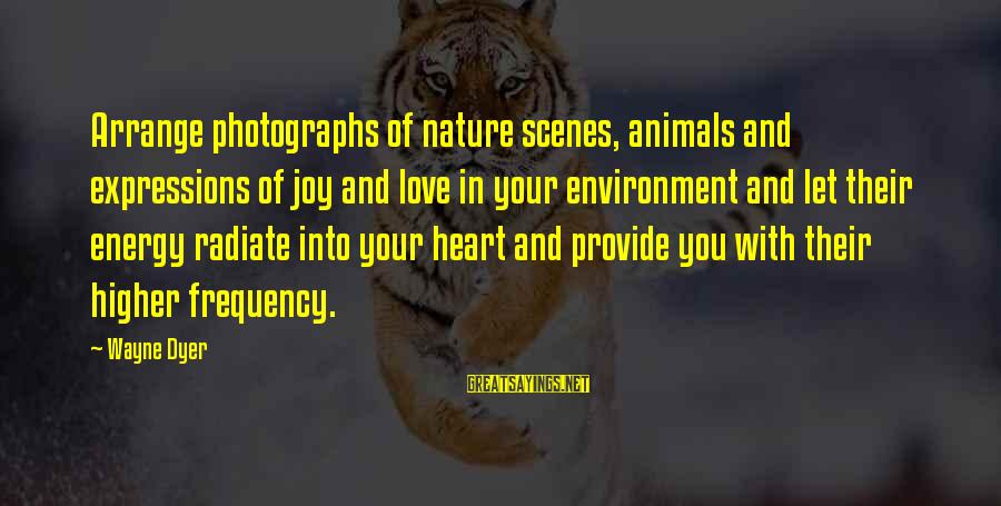 Animals And Happiness Sayings By Wayne Dyer: Arrange photographs of nature scenes, animals and expressions of joy and love in your environment
