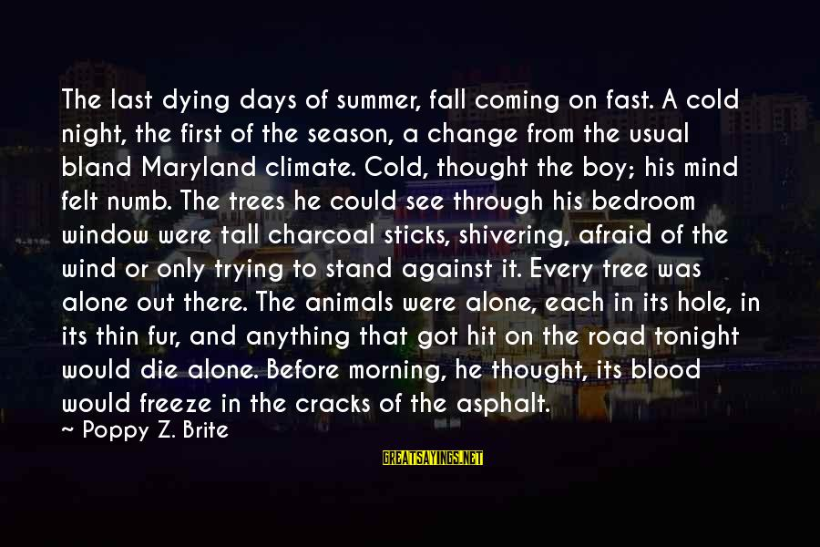 Animals And Souls Sayings By Poppy Z. Brite: The last dying days of summer, fall coming on fast. A cold night, the first