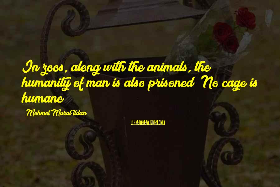 Animals In Zoos Sayings By Mehmet Murat Ildan: In zoos, along with the animals, the humanity of man is also prisoned! No cage