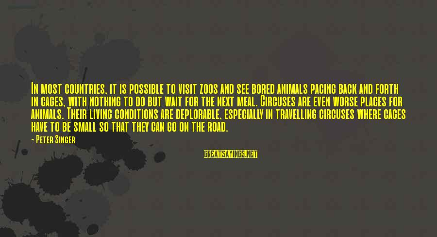 Animals In Zoos Sayings By Peter Singer: In most countries, it is possible to visit zoos and see bored animals pacing back