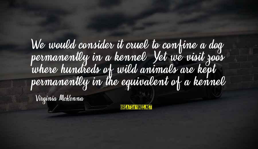 Animals In Zoos Sayings By Virginia McKenna: We would consider it cruel to confine a dog permanently in a kennel. Yet we
