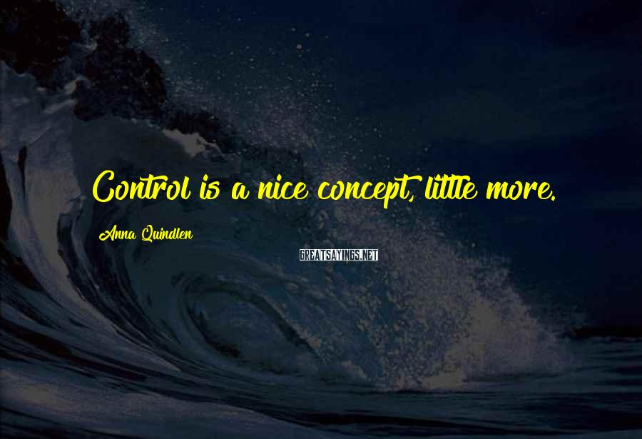 Anna Quindlen Sayings: Control is a nice concept, little more.