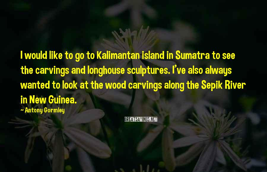 Antony Gormley Sayings: I would like to go to Kalimantan island in Sumatra to see the carvings and