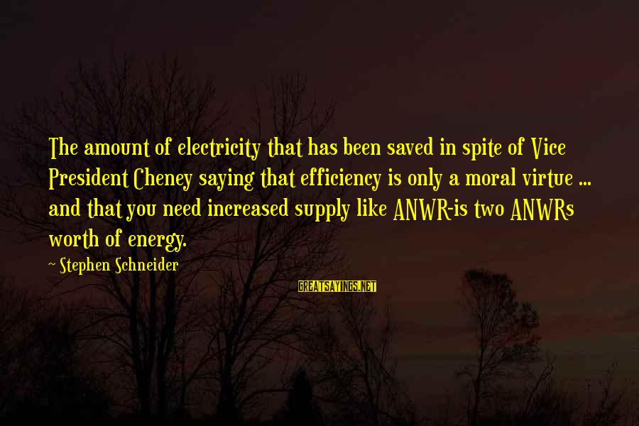 Anwrs Sayings By Stephen Schneider: The amount of electricity that has been saved in spite of Vice President Cheney saying