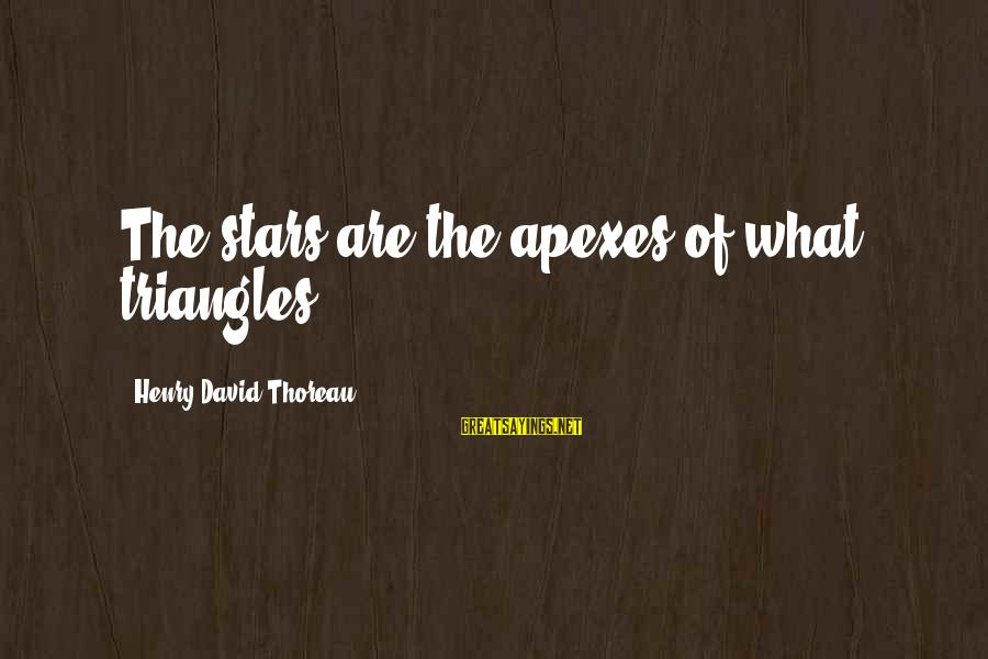 Apexes Sayings By Henry David Thoreau: The stars are the apexes of what triangles!