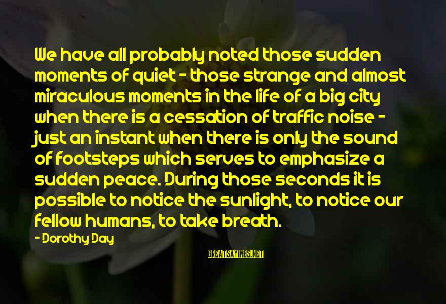 Are You Ok Day Sayings By Dorothy Day: We have all probably noted those sudden moments of quiet - those strange and almost