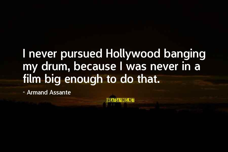 Armand Assante Best Sayings By Armand Assante: I never pursued Hollywood banging my drum, because I was never in a film big