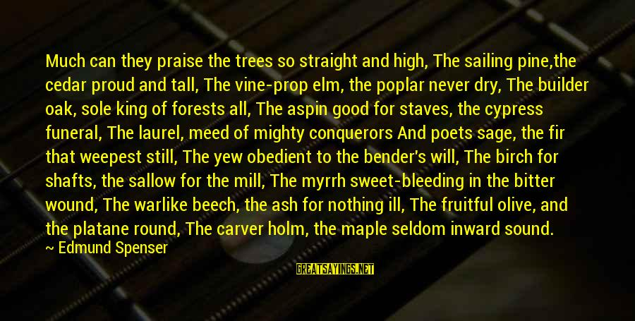 Aspin Sayings By Edmund Spenser: Much can they praise the trees so straight and high, The sailing pine,the cedar proud