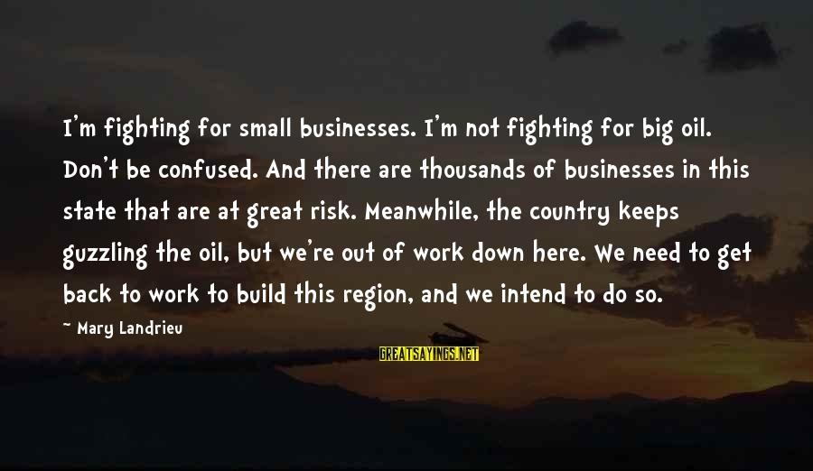 At Risk Sayings By Mary Landrieu: I'm fighting for small businesses. I'm not fighting for big oil. Don't be confused. And