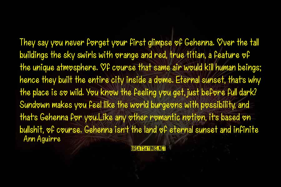 Atmosphere Sayings By Ann Aguirre: They say you never forget your first glimpse of Gehenna. Over the tall buildings the